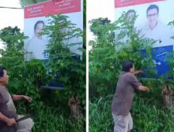 (VIDEO) Sejuk, pendukung PAHAM bersihkan baliho Mor-HJP yang tertutup kusu-kusu