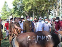 Pemkot Manado sumbang 42 ekor hewan kurban di Idul Adha, Wawali RS: Semoga berkah